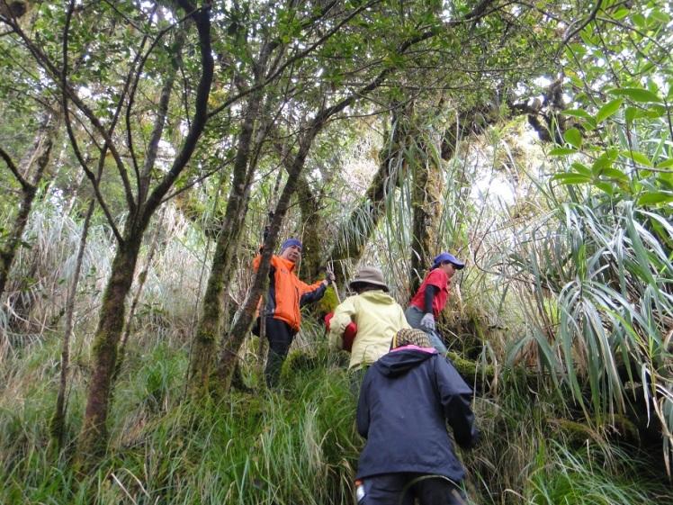 at the foot of the peak of Mt. Piagayungan